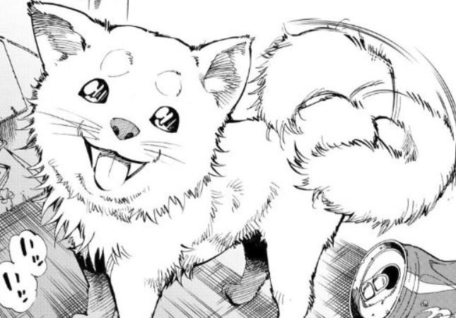 ハロ 犬種